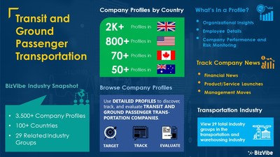 Snapshot of BizVibe's transit and ground passenger transportation industry group and product categories.