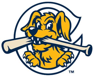 Charleston RiverDogs Logo